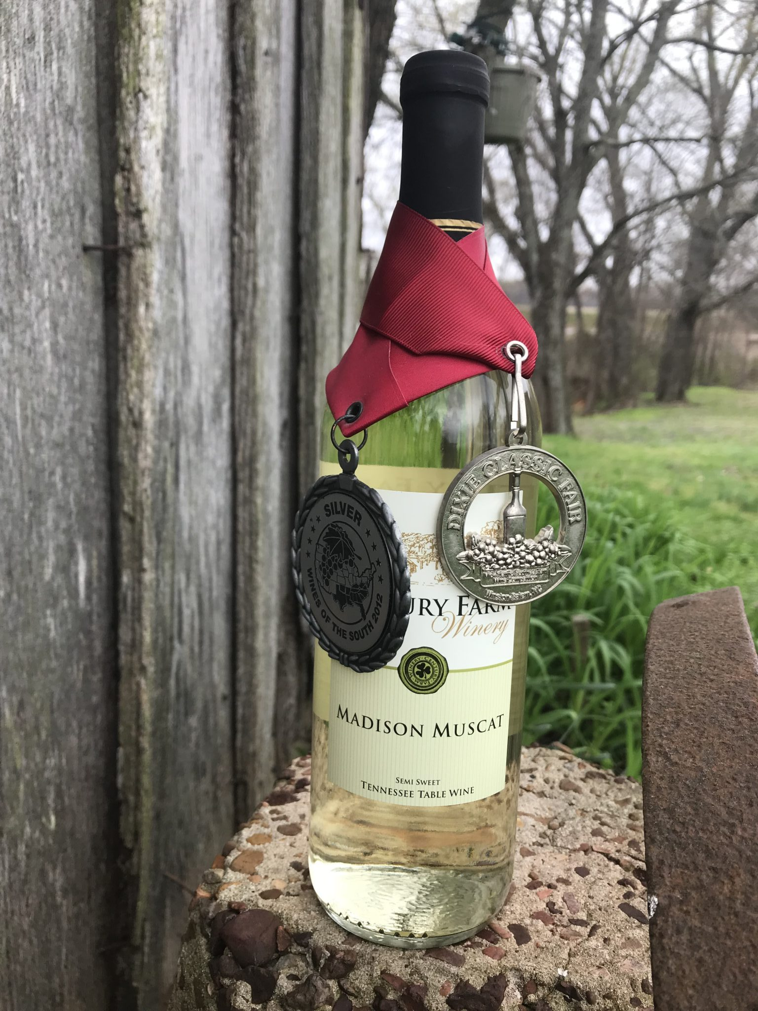 Red Muscadine – February 2018 Wine of the Month