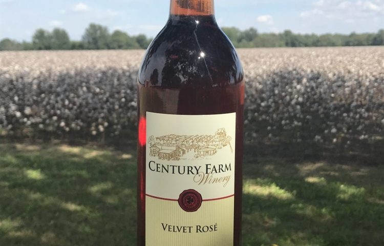 October 2018 Wine Of The Month – Velvet Rose´