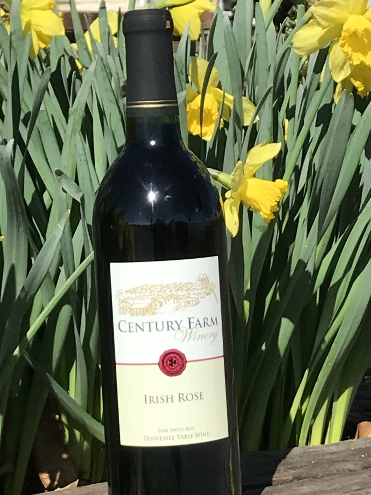 March 2019 Wine Of The Month
