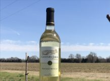 April 2019 Wine Of The Month – Vintage Muscat