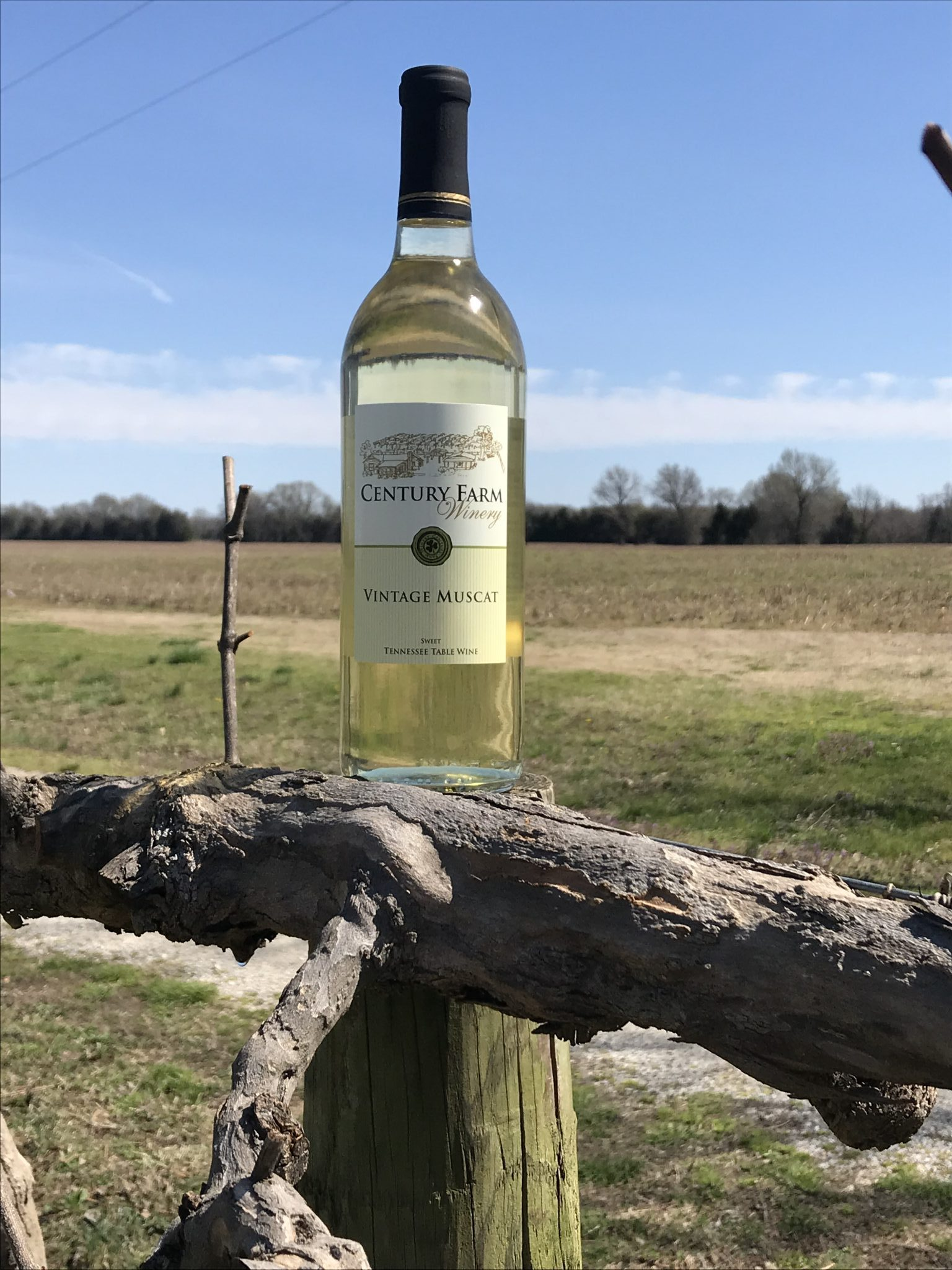 April 2019 Wine Of The Month